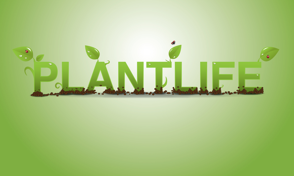 Plantlife Coupons & Promo Codes